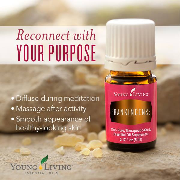 buy-young-living-essential-oils